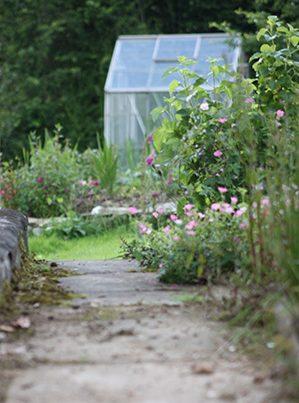 pretty cottage garden at the Glanoer barn
